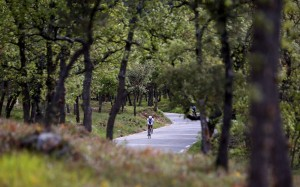 """""""AIX-EN-PROVENCE, FRANCE - MAY 01: Participants compete in the cycle leg of the race during Ironman 70.3 Aix en Provence on May 01, 2016 in Aix en Provence, France. (Photo by Charlie Crowhurst/Getty Images for Ironman) *** Local Caption ***"""""""