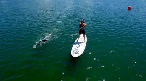 Orientierung beim Freiwasserschwimmen gelingt durch Kopfhebung