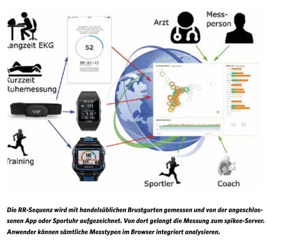 Von der Messung bis zur Auswertung: die Herzfrequenzvariabilität in einem Schaubild dargestellt