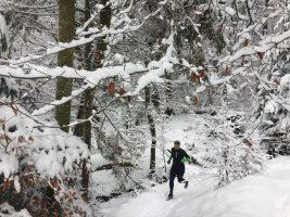 Trailrunning im Winter